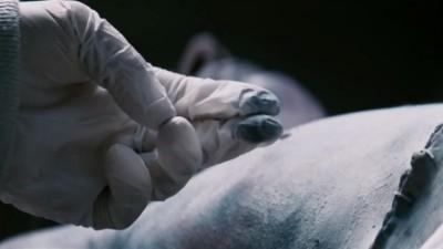 ANAMORPH - Henry Miller