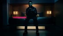 "THE WEEKEND ""Starboy"" - Grant Singer"