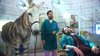 "DREAM CORP LLC - ""Tijuana Zebra"" - Daniel Stessen"